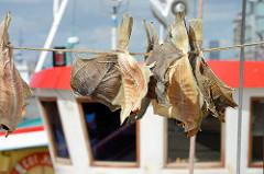 Finkenwerder Trockenschollen - Dreught Fisch; eine lokale traditionelle Spezialität der Hamburger Küche aus Finkenwerder, bei der es sich um gesalzene und getrocknete Schollen handelt.