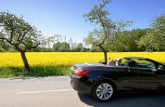 Sonniger Frühlingstag im Wendland - blühender Raps und Apfelbäume am Strassenrand - Capriofahrer.