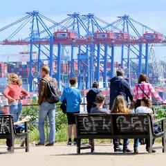 Blick vom Altonaer Balkon über die Elbe zum Hamburger Hafen - Containerbrücken vom Container Terminal Tollerort in Hamburg Steinwerder.