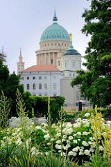 Blick über Blumen und Pflanzen der Freundschaftsinsel zur Kuppel der  Potsdamer Nikolaikirche.