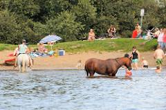 Badestelle an der Dove-Elbe in Hamburg Allermöhe - Pferde mit Kindern im Wasser.