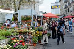 Wochenmarkt in der Grossen Bergstrasse von Hamburg Altona - Verkauf von Topfpflanzen und Blumen.