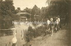 Blick vom Rundweg um den Stadtparksee im Hamburger Stadtpark zur Liebesinsel - Jungen stehen barfuss am Seeufer.