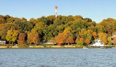 Ein Schlepper fährt auf der Elbe vor Hamburg Nienstedten - Bäume mit golbraunen und roten Herbstblättern am Elbufer - Leuchtfeuer / Leuchtturm zwischen den Bäumen.