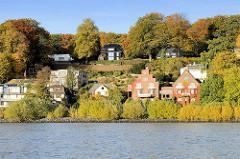 Wohnhäuser dicht am Elbufer in Hamburg Nienstedten; Hausfassaden mit rotem Wein bewachsen - Bäume in Herbstfarben am Elbhang.