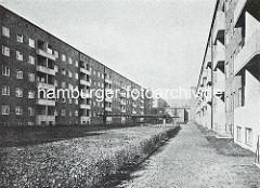 Innenhof in der Klinker Siedlung Jarrestadt in Hamburg Winterhude - Architekturbüro Bomhoff & Schöne.