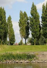 Blick vom Wasser auf die Grünanlage Entenwerder am Ufer der Norderelbe - Sitzbänke unter Bäumen.