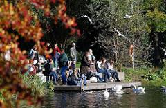 Herbstlaub in der Sonne im Hamburger Stadtpark - BesucherInnen sonnen sich auf dem Bootssteg am See, Schwäne am Seeufer.