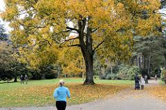 Spaziergänger, ParkbesucherInnen beim Herbstspaziergang im Hamburger Stadtpark - Joggerin.