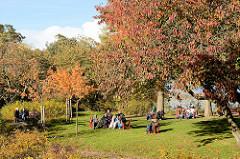 Sonniger Sonntag Nachmittag im Herbst im Stadtpark von Hamburg Winterhude - ParkbesucherInenn sonnen sich unter Herbstbäumen.