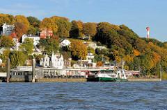 Blick von der Elbe auf den Fähranleger in Hamburg Blankenes - das Fährschiff Altona / Fährverbindung nach Cranz  hat festgemacht - im Hintergrund Wohnhäuser zwischen herbstlich gefärbten bunte Bäumen am Elbhang.