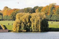 Blick über den Stadtparksee in Hamburg Winterhude, eine grosse Weide steht am Seeufer, die Zweigen hängen dicht über dem Wasser - im Hintergrund die Festwiese, gesäumt mit herbstlich gefärbten Bäumen.