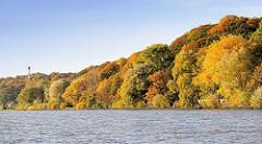 Dicht bewaldetes Elbufer bei Hamburg Nienstedten / Blankenese; die Herbstbäumen leuchten in allen Herbstfarben.