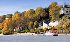 Herbstlich gefärbte Bäume am Elbufer in Hamburg Othmarschen / Oevelgönne - das Arbeitsschiff Deepenschriewer vermisst die Wassertiefe nahe des Elbufers.