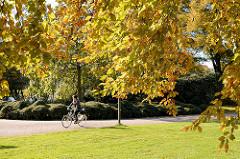 Buntes Herbstlaub / Buchenlaub im Herbst, Fahrradfahrerin im Stadtpark von Hamburg Winterhude.