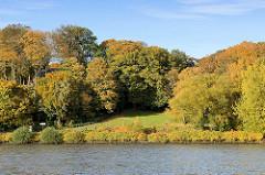 Herbst in der Hansestadt Hamburg - Herbstwald am Elbufer, Park mit Herbstbäumen an der Elbe.