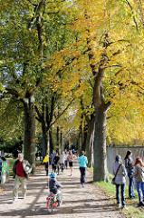 Sonntag Nachmittag im Herbst in der Allee beim Stadtparksee / Freibad - Sonntagsspaziergang in der Herbstsonne / Goldener Oktober in Hamburg.