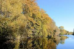 Herbstbäume am Ufer der Bille in Hamburg Billstedt.