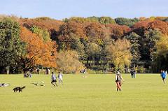 Sportler, Fussballspieler u. Spaziergängerin mit Hund auf der Wiese im Zentrum vom Hamburger Stadtpark - Herbstwald mit roter / goldener Färbung.