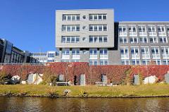 Verwaltungsgebäude am Mittelkanal in Hamburg Hamm - die Ufermauern sind mit rotem herbstlichem Weinlaub bedeckt.