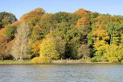 Dicht bewaldetes Elbufer bei Hamburg Nienstedten / Blankenese; die Herbstbäumen leuchten in allen Herbstfarben. Spaziergänger auf dem Elbweg entlang der Elbe.