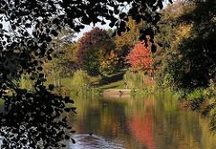 Bunte Herbstbäume am Ufer des Stadtparksees in Hamburg Winterhude.