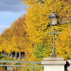 Historische Laterne / Lampe an der Görnebrücke über die Alster in Hamburg Winterhude. Herbstliche Strassenbäume mit gelben Blättern am Leinpfad.