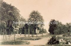 Blick über die alte Grünanlage im historischen Winterhude am Grasweg - lks. Häuser an der Ulmenstrasse.