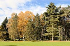Hohe Bäume in unterschiedlicher Herbstfärbung - Birke mit gelben Blättern, eine Hängematte ist zwischen Bäumen befestigt - Bereich vom hist. Sprunggarten beim Nordring / Ententeich.