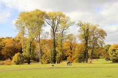 Herbststimmung im Hamburger Jenischpark - herbstlich gefärbte Bäume, Goldener Oktober - SpaziergängerInnen.