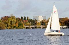 Segelboot in Fahrt auf der Hamburger Alster - im Hintergrund Herbstbäume am Ufer der Bellevue und die Brücke am Langen Zug; Bürohaus Alstercity in Hamburg Winterhude.