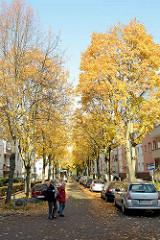 Strassenbäume im Herbst - Fussgängerin; Chapeaurogeweg in Hamburg Hamm.