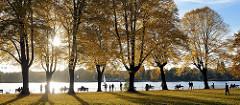 Sonniger Herbst in der Hansestadt Hamburg, Stadtteil Uhlenhorst an der Aussenalster - Herbstbäume mit gelbem Laub, Parkbänke am Wasser.