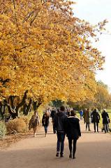 Alsterspaziergang am Sonntag Nachmittag in der Herbsonne unter goldenen Herbstbäumen an der Hamburger Aussenalster.