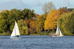Segelboote im Wind auf der Hamburger Aussenalster - Bäume mit Herbstlaub an der Winterhuder Strasse Bellevue.