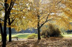 Goldener Herbst in der Hansestadt Hamburg - Herbstbilder vom Hammer Park.
