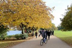 Alsterweg in der Grünanlage am Alsterufer in Hamburg Rotherbaum - SpaziergängerInnen, Fahrradfahrer unter Herbstbäumen; Sonntagsspaziergang in der Herbstsonne.
