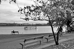 Herbststimmung in Schwarz-Weiss an der Hamburger Aussenalster im Stadtteil Rotherbaum - eine Frau sitzt auf einer Bank am Wasser - Spaziergänger mit Hund, Fahrgastschiff der weissen Alsterflotte in Fahrt.