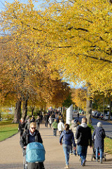 Sonniger Herbst in der Hansestadt Hamburg - SpaziergängerInnen an der Aussenalster, Schöne Aussicht - die Strassenbäume tragen Herbstlaub.