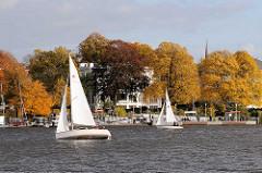 Segelboote im Wind auf der Hamburger Aussenalster vor dem Anleger Winterhuder Fährhaus; Herbstbäume an der Strasse Schöne Aussicht in Hamburg Uhlenhorst.