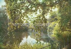 Wallgraben mit Bäumen beim Botanischen Garten in den Hamburger Wallanlagen.