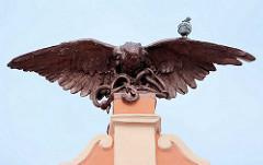 Falke / Raubvogel - Skulptur auf dem Dach vom SOKOL-Gebäude in Kolín; eine Taube sitzt auf der Schwinge des Vogels, der eine Schlange in den Fängen hält.