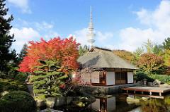 Teehaus im Japanischen Garten von Planten un Blomen in der Hamburger Innenstadt; herbstlich gefärbter Ahorn.