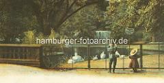 Zoologischer Garten bei den Hamburger Wallanlagen am Dammtor - Teich mit Wasservögeln, Füttern verboten; zwei Kinder / Junge und Mädchen stehen am Zaun - im Hintergrund ein kleiner Wasserfall.