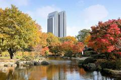 Herbstbäume im Japanischen Garten in der Hamburger Innenstadt, Grünanlage Planten un Blomen - Hotelgebäude am Dammtor.