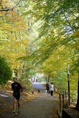 Spaziergänger unter herbstlichen Bäumen in den Hamburger Wallanlagen beim Wallgraben.