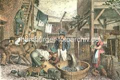 Carl Hagenbecks Handelsmenagerie - Tierhändler in Hamburg St. Pauli; Robben im Wasserzuber, Hirsch mit Geweih - Affen werden aus einer Kiste ausgepackt, Tiere im Käfig.