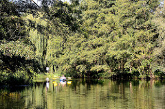 Kanufahrt im Spreewald bei Lübben - hohe Bäume am Ufer des Flusses.