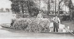 Altes Bild vom Transport von Heu o. Korn auf Schubkarren im Kahn auf einem Fliess im Spreewald.