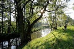 Lauf der Hauptspree bei Lübbenau - Bäume am Flussufer; Spaziergängerin mit Hund auf dem Deich.